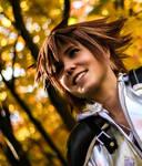 Kingdom Hearts 2 - A smile a Day