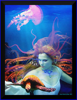 The Siren of Devil's Reef