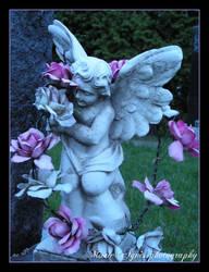 Purple Angel's flower