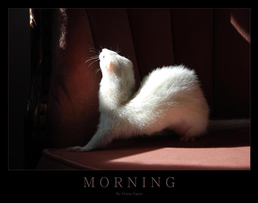 Morning by Yukkabelle