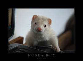 FUSBY KEY by Yukkabelle