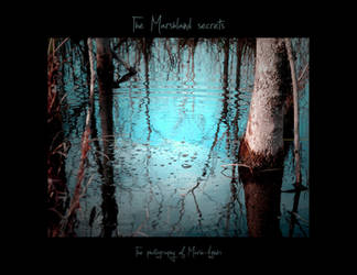 The Marshland Secrets Calendar by Yukkabelle