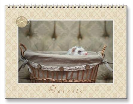 Ferrets Calendar - 4 -