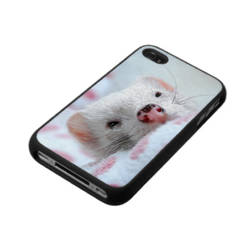 Pluie d'Amour - Ferret iPhone case - by Yukkabelle