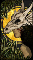 Art Insomnia 004: Here be Dragons