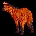 Maned Wolf by Keetay