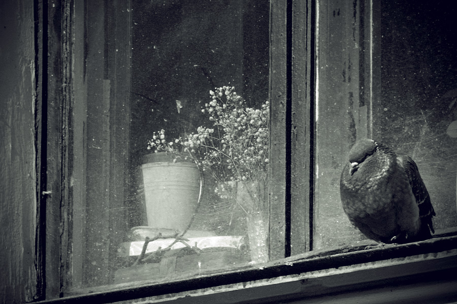 Behind the Glass by Ilman-Lintu