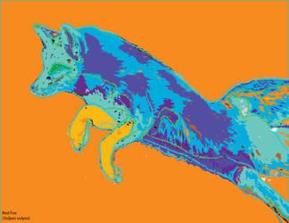 Red Fox (Vulpes vulpes) by iceball3