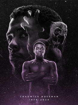 Black Panther tribute poster