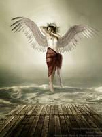 Berta - Angel by josemanchado