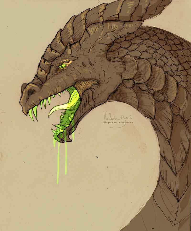 Dragon that is evil... by Nimphradora