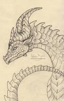 Dragon sketch 03 by Nimphradora