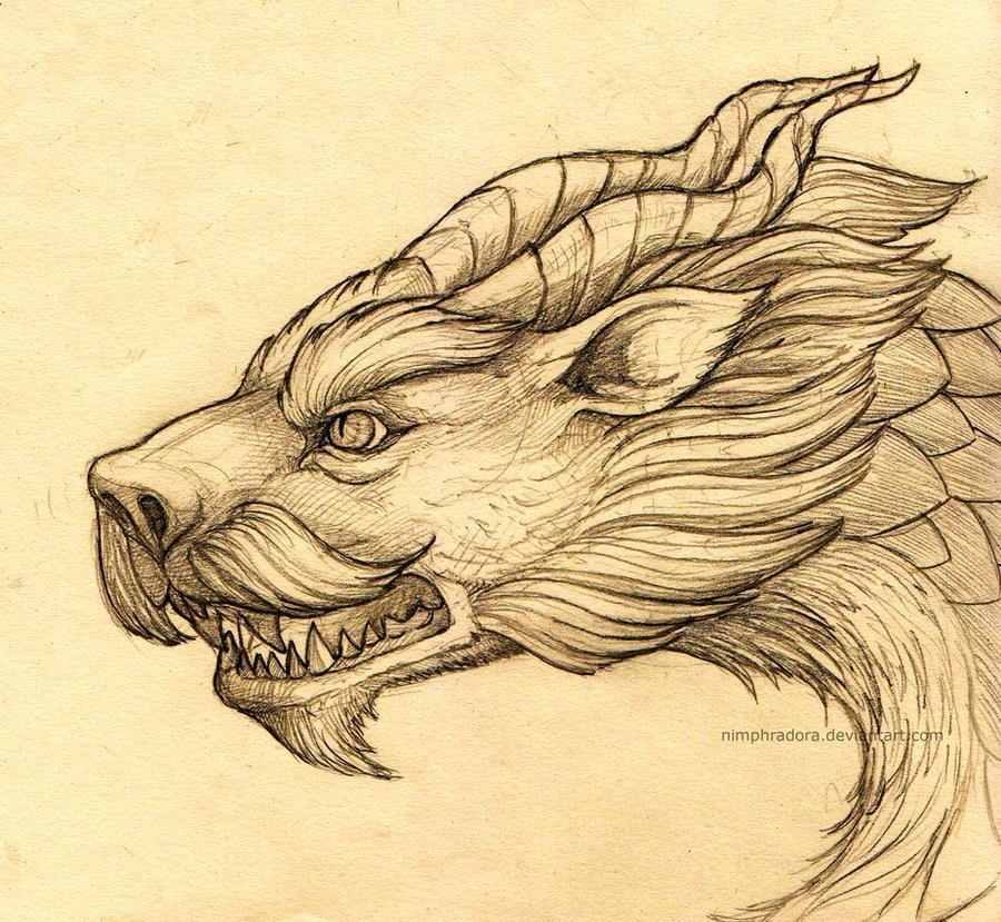 Dragon I by Nimphradora
