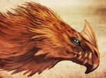 Arctic dragon + video