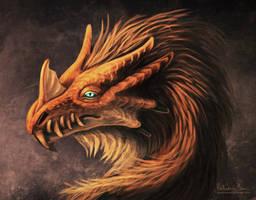 Wooly dragon + video by Nimphradora