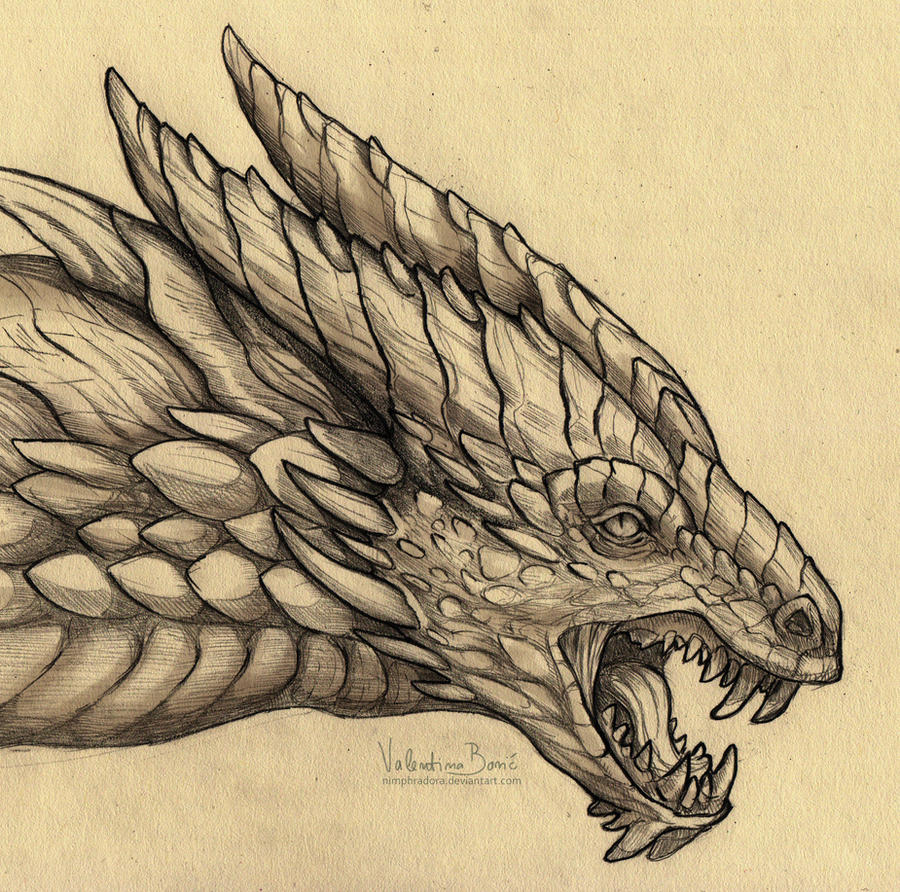 Tarkusfin by Nimphradora