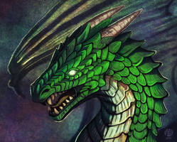 Green dragon by Nimphradora