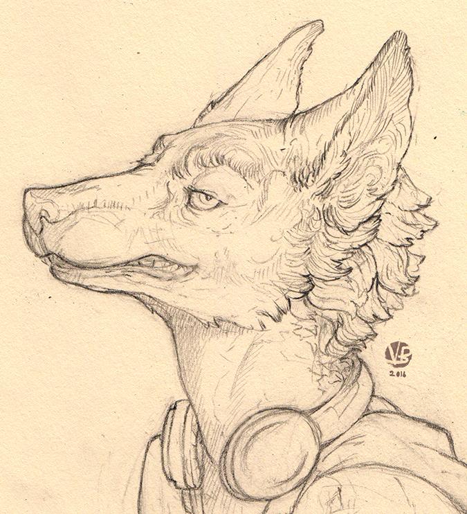Wolf sketch by Nimphradora