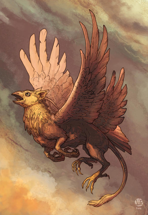Griffin by Nimphradora