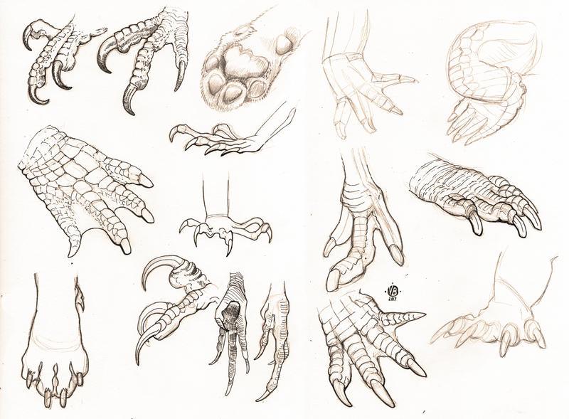 Feet study by Nimphradora