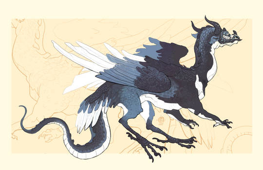 23.12. dragon