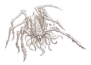 Linhas de aranha da Nimphradora
