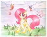 Fluttershy wonder
