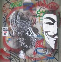 Cat and Vendetta