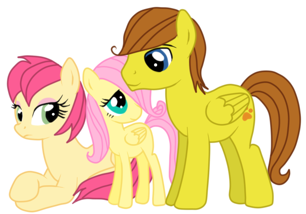 Mlp Fluttershys Family Traffic Club