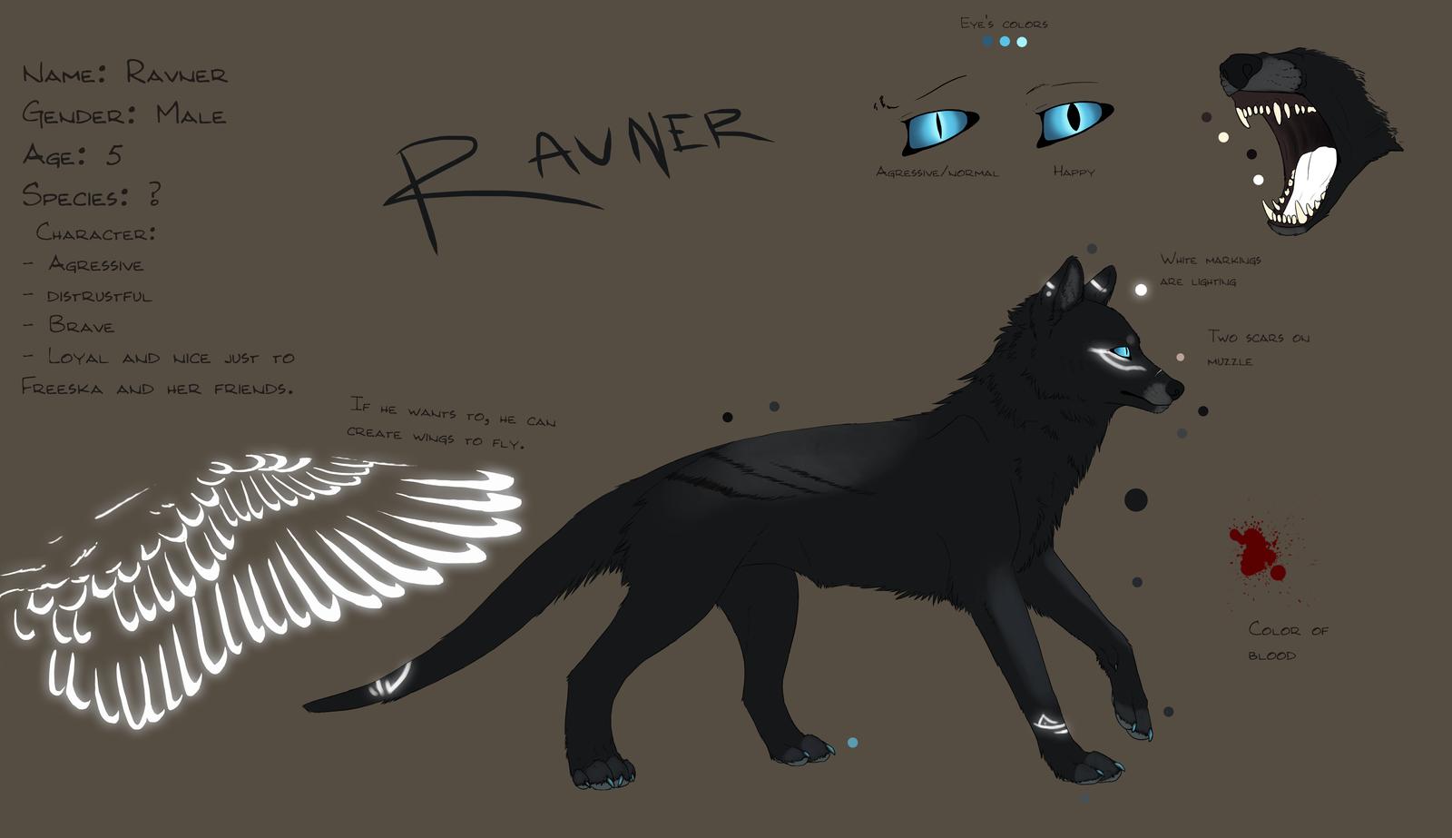 Ravner Ref sheet by Rizuuki