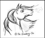 Horse Sketch by The-strawberry-tree