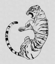 tiger sketch by SarahMNemeth