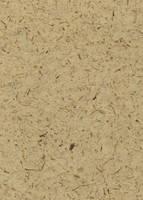 Paper 'Brown Flecks' by SteveR55