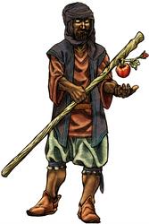 Fira Druid