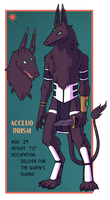 Accluo Character Sheet by Teslaverian