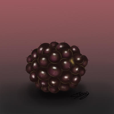 Blackberry by ElyGraphic