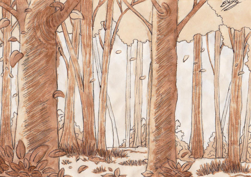 Forest by ElyGraphic