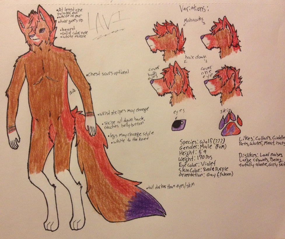 Lavi (Lava) Updated Reference  by LAVAzWOLF