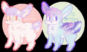 bunfox adopts by fairypaws