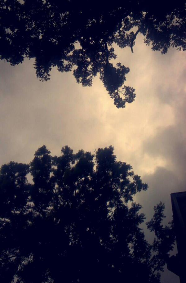Sky/Clouds/Trees by RandomKEO