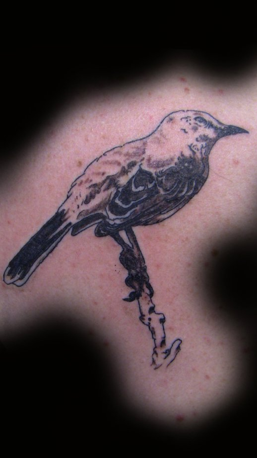 mockingbird tattoo by mgtattoo on deviantart. Black Bedroom Furniture Sets. Home Design Ideas