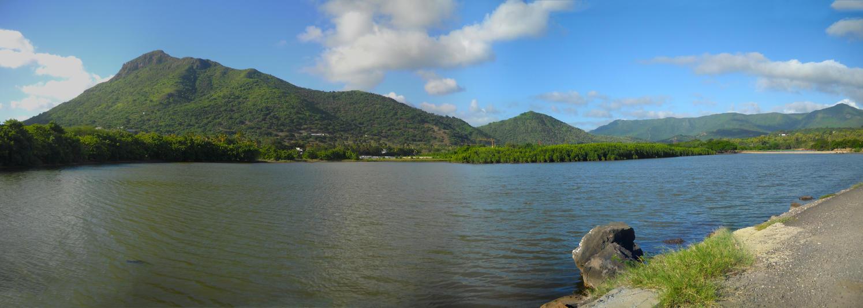 Tamarin Panorama by carrotmadman6