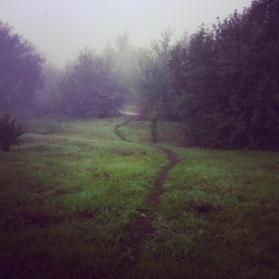 Love the fog by darkshines7