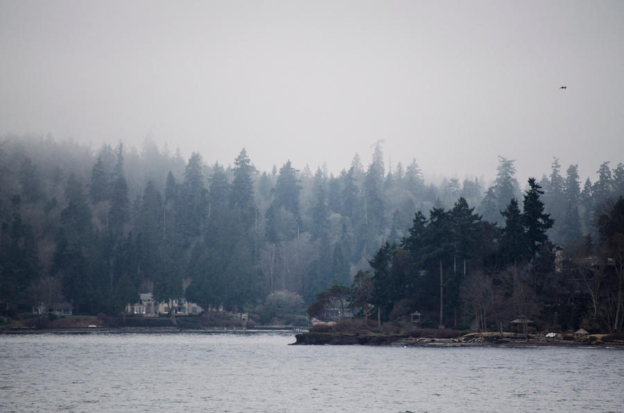 Bainbridge Island by Cinestress