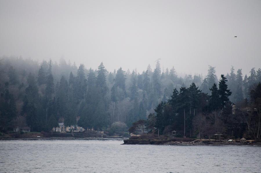 Bainbridge Island by Cinestress
