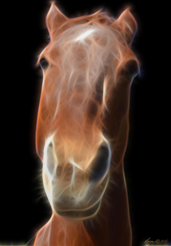 Horse2 by sapoguapo