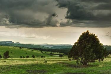 Apache-Sitgreaves Pasture by sapoguapo