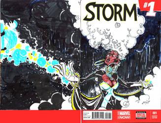 Storm Sketchcover by samax