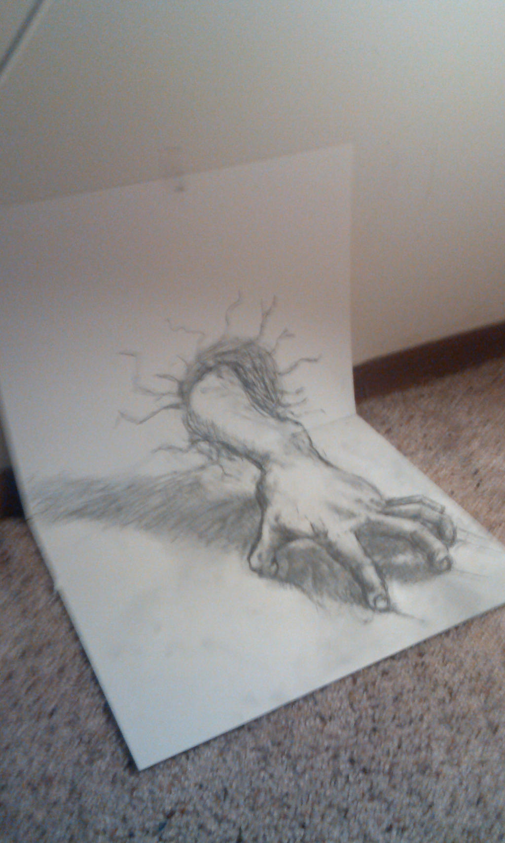3d Optical Illusion Hand By Pboetcher On Deviantart