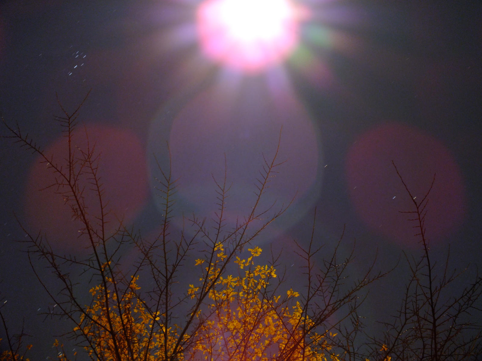 Moon Beams by DecThePixter